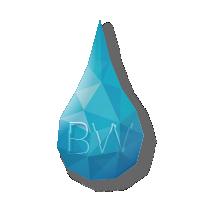 brightwaters_beeldmerk_v2_200x200
